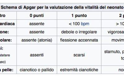 La prima pagella (Indice di Apgar)